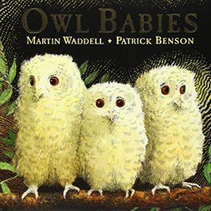 Owl-Babies-0